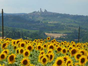 Farmhouse in Siena San Gimignano with view
